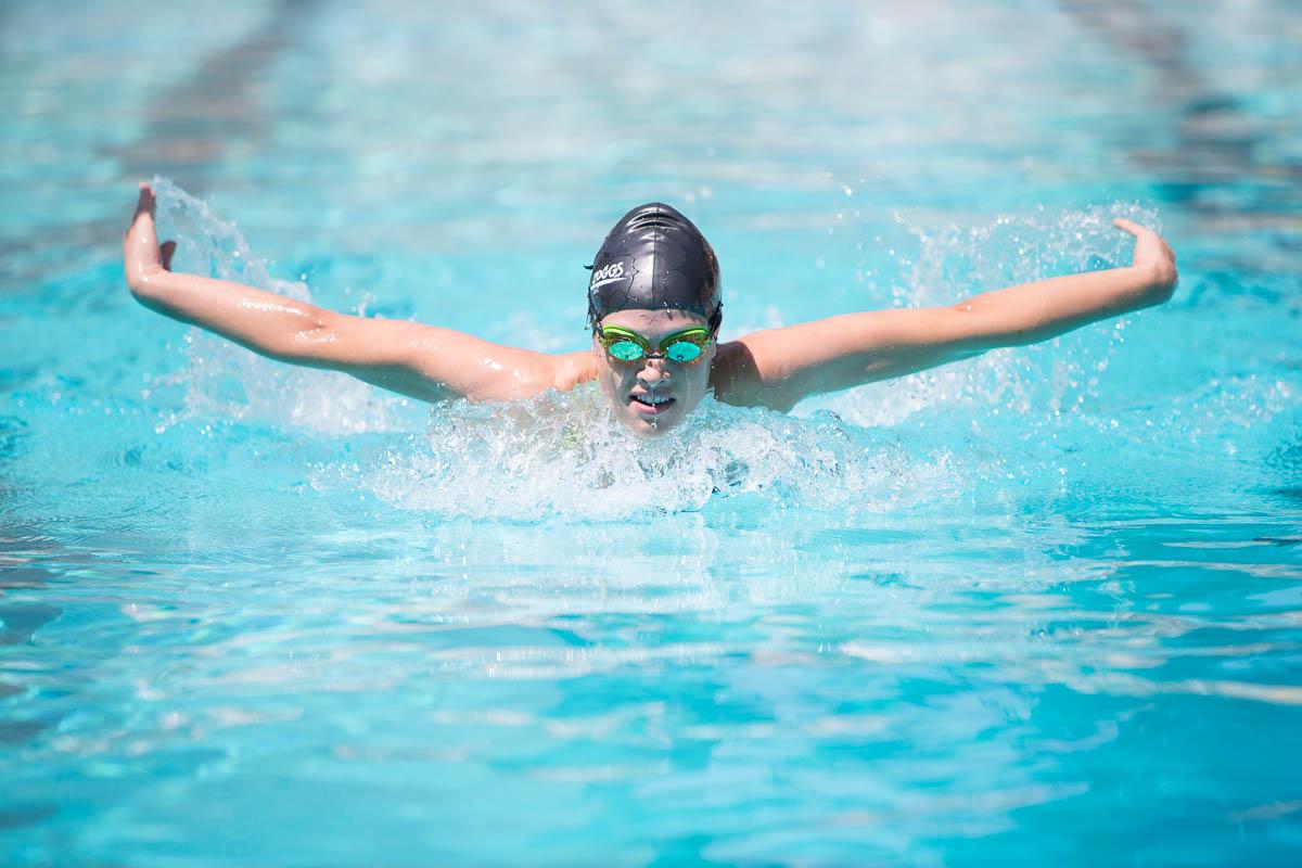 Butterfly Zoggs Swim Diary